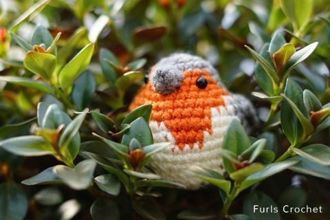 Free Crochet Pattern Robin Redbreast