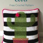 Free Crochet Pattern Cactus Pillow