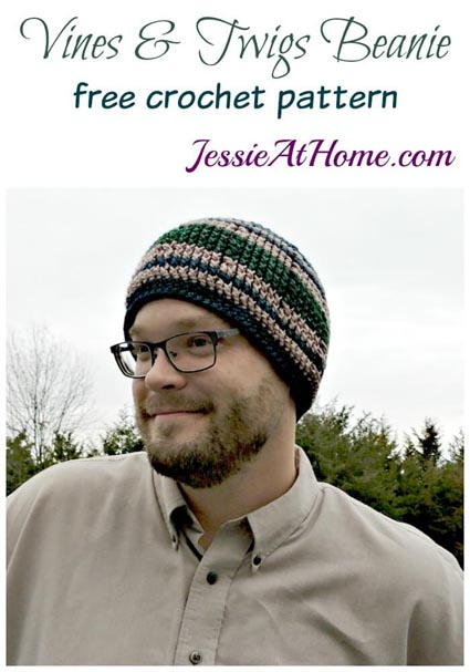 Free Crochet Pattern Vines and Twigs Beanie