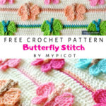 Free Crochet Pattern Butterfly Stitch