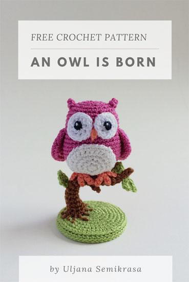 Free Crochet Pattern an Owl is Born