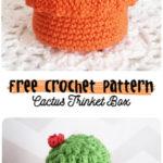 Free Crochet Pattern Cactus Trinket Box
