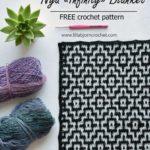 Free Crochet Pattern Nya Infinity Blanket