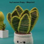 Free Crochet Pattern Snake Plant