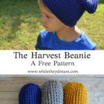 Free Crochet Pattern The Harvest Beanie