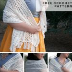 Free Crochet Pattern Easy Modern Shawl