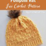 Free Crochet Pattern Bobble Drops Hat