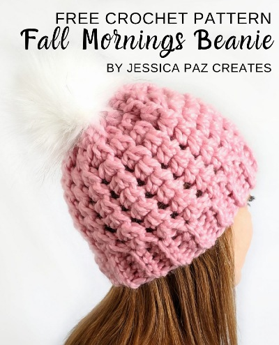 Free Crochet Pattern Fall Mornings Beanie