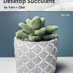 Free Crochet Pattern Desktop Succulent