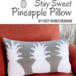 Free Crochet Pattern Pineapple Pillow
