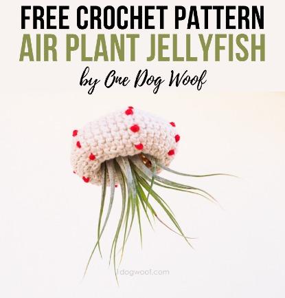 Free Crochet Pattern Air Plant Jellyfish